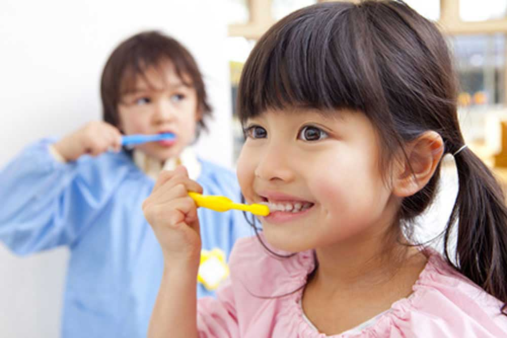 歯磨きの方法をアドバイス